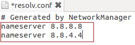 DNS_google