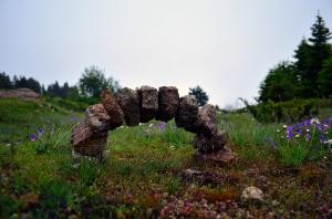 çam ağaçları ve çiçeklerin arasında bir taş kemer